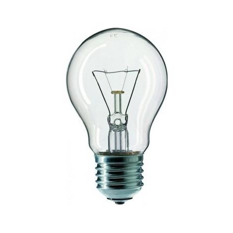 Industrijska žarulja CLEAR E27/100W/240V