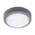 LED Vanjska stropna svjetiljka LED/13W/230V IP54