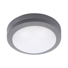 LED Vanjska stropna svjetiljka LED/13W/230V IP54