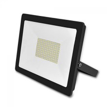 LED Vanjski reflektor ADVIVE PLUS LED/100W/230V IP65