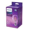 LED Žarulja VINTAGE Philips E27/6W/230V