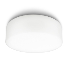 Philips 32081/31/16 - Svijetiljka za kupaonicu MYBATHROOM POOL 1xE27/20W/230V IP44