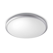 Philips 34347/87/P0 - LED svjetiljka za kupaonicu MYBATHROOM GUPPY LED/17W/230V IP44